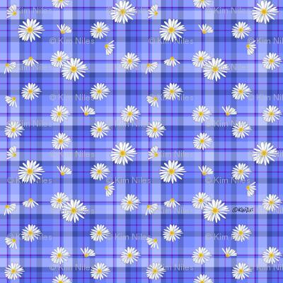 Daisy Plaid Blues (SMALL)
