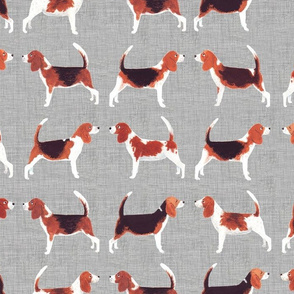 Beagle Meets Beagle | Grey