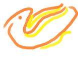 Rbird_thumb