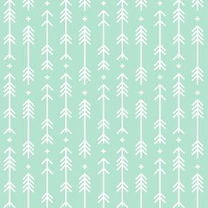 cross plus arrows mint green