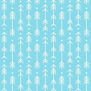cross plus arrows sky blue