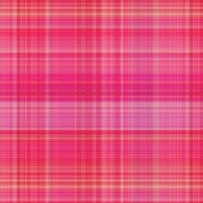 Pink Plaid 1