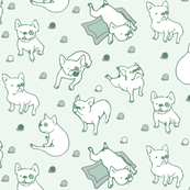 Frenchie Pack Mint