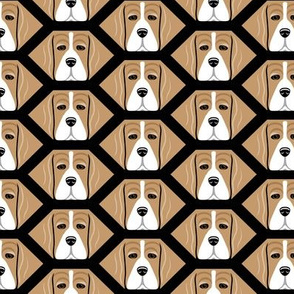 Honeycomb Beagles
