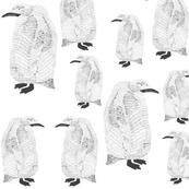 penguin closer black on white