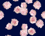 Rrpeony_photo_repeat_thumb