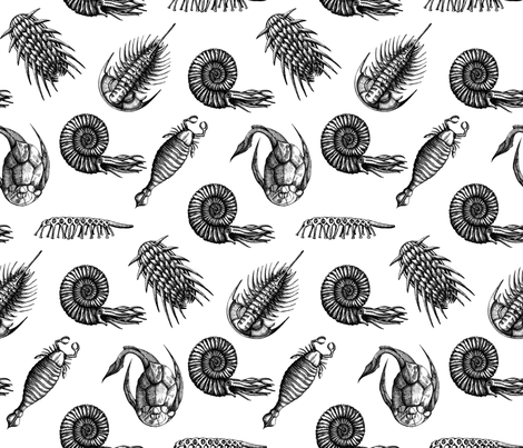 black_full_ancient_sea fabric by chicca_besso on Spoonflower - custom fabric