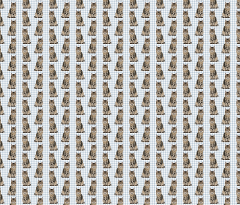 Main Coon Cat fabric by pateisen on Spoonflower - custom fabric