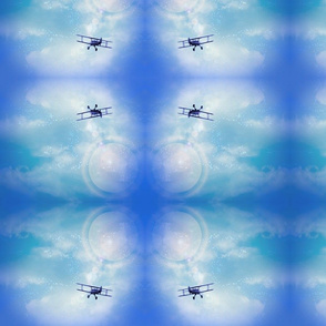 biplane in the blue sky