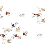 Beagles Winter Rabbit Hunt