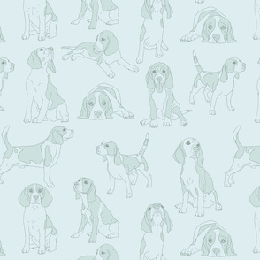 pale blue beagles