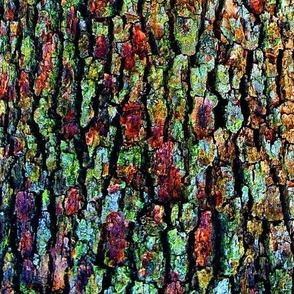 ANatural Abstraction of Tree Bark