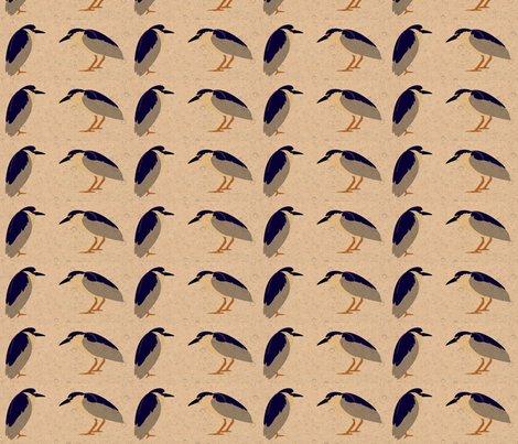 Rrblack_crowned_night_heron.pdf_ed_ed_shop_preview