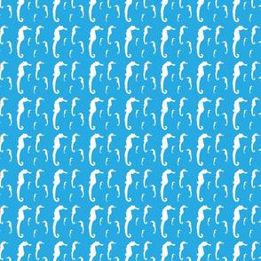 Sea of white Seahorses