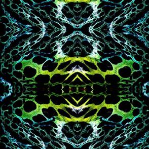Frog skin 2