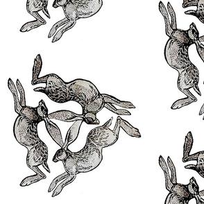 3 Hares Medium