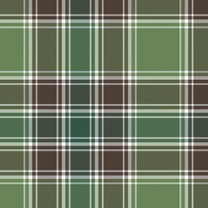 MacDonald hunting tartan - ancient colors