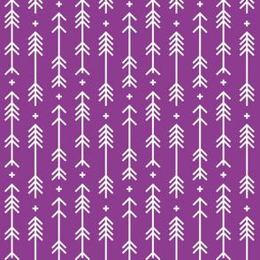 cross plus arrows grape
