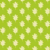 Old Oak - Lime