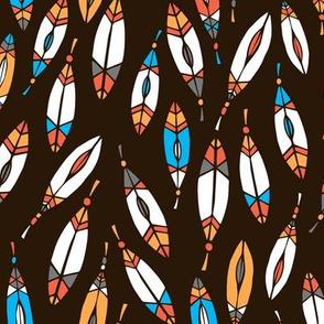 Southwest feathers