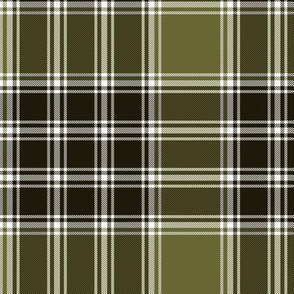 MacDonald Lord of the Isles weathered tartan