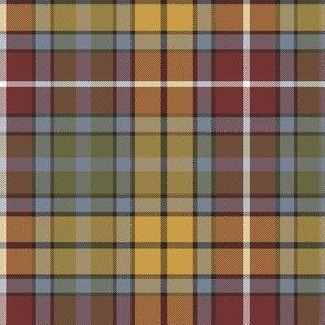 "Buchanan Ancient tartan, 6"" weathered colors"