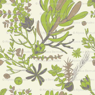 Cream Cradle Flora
