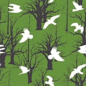 Birds in flight on park