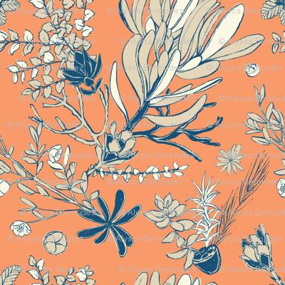 Orange Cradle Flora