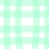 Watercolor Check in Mint