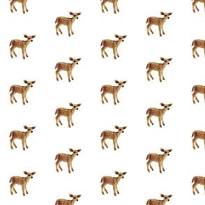 Little Caramel Deer on White