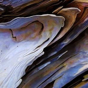 Driftwood Edges - FQ