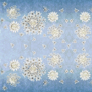 Queen Anns lace lumination