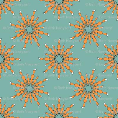 Orange on Aqua