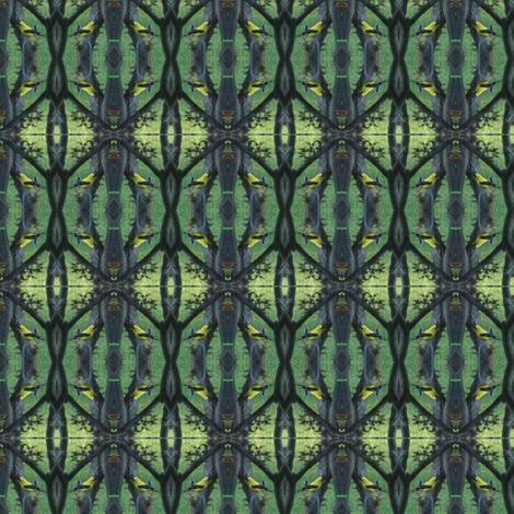 finch-ed fabric by kittykittypurrs on Spoonflower - custom fabric