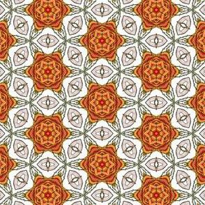 Cyompon's Star Rose