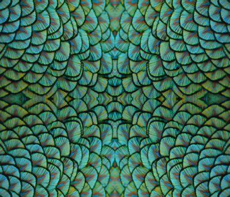 Peacock Panel 2 fabric by serendipitymuse on Spoonflower - custom fabric