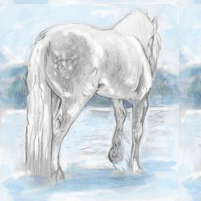 Gypsy Horse, Tinted