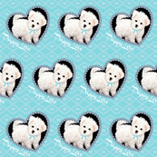 Bichon Frise Puppy dog on blue