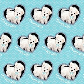 Bichon Frise Puppy dog on blue