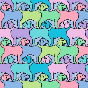 Rainbow Dogs with Border