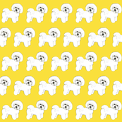 Bichon Frise Sunshine Yellow