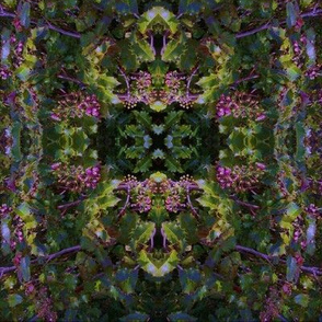 Oregon Grape Kaleidoscope