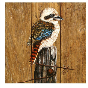 kOOKABURRA_GIRL_POWER_40cm_x_40cm