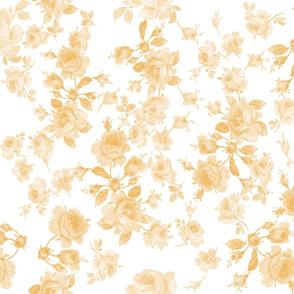 Saint Colette June Roses buttercup