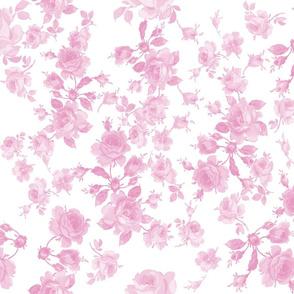 Saint Colette June Roses sorbet pink