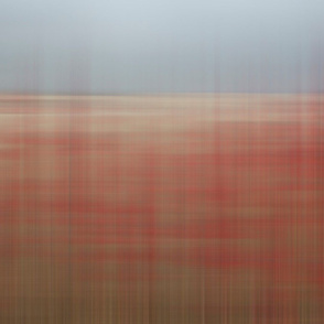 Red and Gray Blur