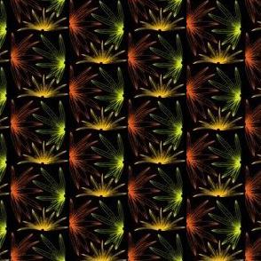 Midnight Garden Moths