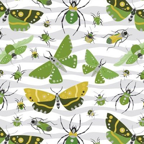 The Bug Invasion - Mustard, Olive and More