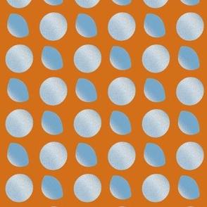 Silver-orange-5